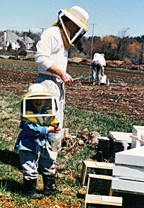 Our first hive - Boston Honey Company
