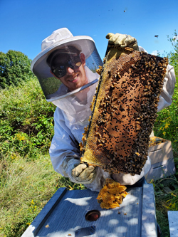 Boston Honey Company